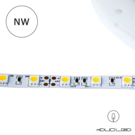 LED Strip SMD5050 12V 14.4W/m K4000 IP20 60LED/m