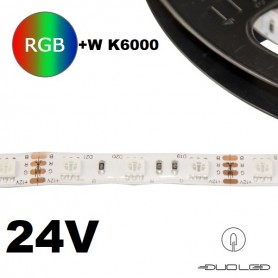 LED Strip SMD5050 24V 14.4W/m RGB+K6000 IP20 60LED/m