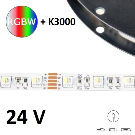 LED Strip SMD5050 24V 14.4W/m RGB+K3000 IP20 60LED/m
