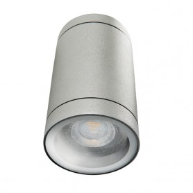 LED Exterior ceiling light GU10 DL-125