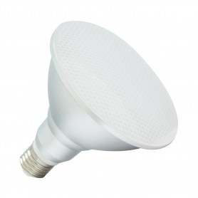 LED E27 light PAR38 COB 15W IP65