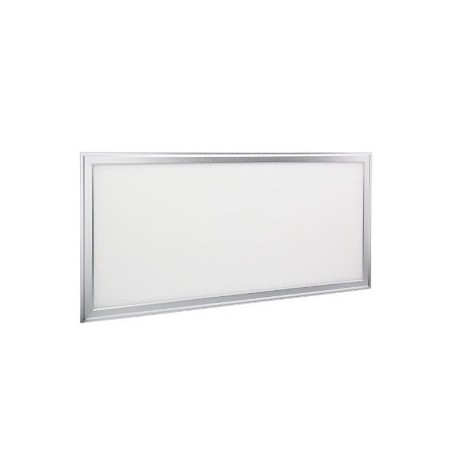LED Panel EPISTAR 30x60cm 24W silver